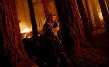 6 người chết, 700 công trình bị thiêu rụi vì cháy rừng tại California