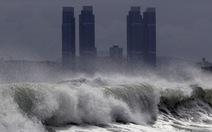 Trung Quốc phát cảnh báo cao nhất với bão Bavi, cây cối ngã đổ trên bán đảo Triều Tiên