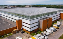 Nhà kính lớn nhất thế giới trên mái nhà tại Canada