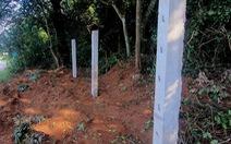 Công ty du lịch bị phạt gần 200 triệu đồng vì phá rừng