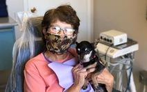 Gặp cô chó không răng chuyên an ủi bệnh nhân ở phòng nha