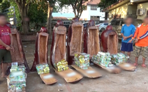 Hơn 230kg ma túy giấu trong tượng gỗ từ Lào về Việt Nam