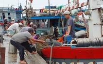 Cảng cá lớn nhất Thừa Thiên Huế hối hả trước giờ bão vào