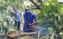 Bão số 5: Đà Nẵng chèn bao cát ngăn nước vào nhà, Huế có 14 người bị thương