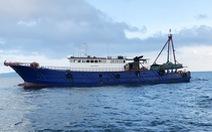 Bắt tàu cá Trung Quốc đánh bắt hải sản trái phép trên vùng biển Móng Cái