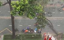 Cây bật gốc đổ ngang đường Nguyễn Tri Phương làm 1 người bị thương, ngập và kẹt xe nhiều nơi