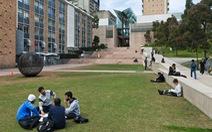 36 trường đại học Úc xin chính quyền cho du học sinh trở lại