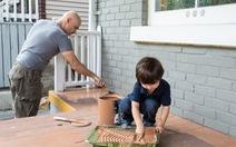DIY - 'Điểm sáng' bán lẻ khi người dân đổ tiền chăm chút tổ ấm