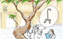 Nỗi lo của cây cổ thụ