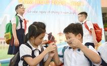 Năm học mới linh hoạt với 'kế hoạch giáo dục' của mỗi trường