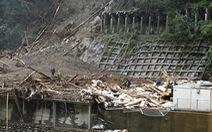 Hai thực tập sinh Việt Nam ở Nhật mất tích do bão Haishen