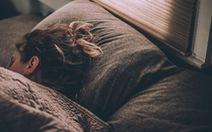 Phát hiện tế bào thần kinh đóng vai trò quan trọng trong điều chỉnh giấc ngủ
