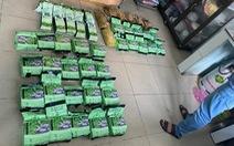 Phá đường dây vận chuyển ma túy từ Campuchia về TP.HCM, thu 47kg ma túy