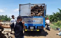 Nhóm thanh niên cản trở, hành hung công nhân dự án cao tốc Trung Lương - Mỹ Thuận