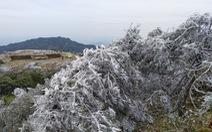 Miền Bắc tiếp tục rét hại, có nơi mưa tuyết
