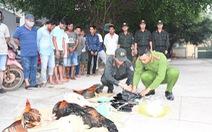 Bộ Công an triệt phá trường gà lớn ở Trà Vinh
