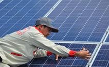 Kiên Giang: 99,9% dự án điện mặt trời trang trại là làm chui?