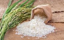 Thèm mùi gạo mới