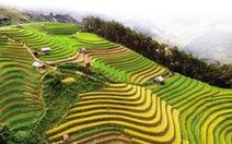 Yên Bái và giấc mơ Bhutan