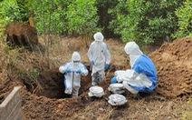 Công bố quy trình 'làm sạch dioxin' ở sân bay Biên Hòa