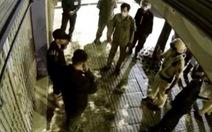 Nhóm người đi xe con trộm chậu kiểng 'lâu đời' lúc rạng sáng bị bắt tại trận