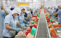 Doanh nghiệp kêu cứu vì bị dừng sản xuất dù đã chi hàng chục tỉ đồng cho '3 tại chỗ'