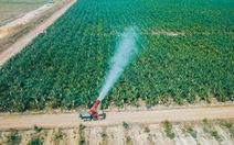 Xây dựng nước Việt hùng cường: Việt Nam trên đường thành cường quốc nông nghiệp