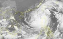Bão số 8 hoàn lưu rộng, gió mạnh cấp 6 trở lên trải dài 600km