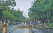 Miền Trung mưa to gió lớn, 2 người mất tích, cây đổ đè trúng người đi đường ở Huế