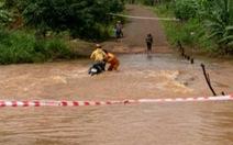 Khen thưởng 3 công nhân điện cứu người giữa dòng nước xiết