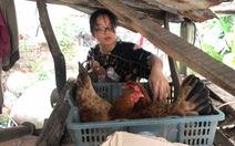 Cô học trò mở 'quán tạp hóa', trồng chuối, nuôi gà từ năm 10 tuổi