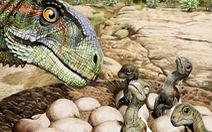 Phát hiện tổ khủng long có hơn 100 trứng và 80 bộ xương