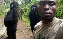 Nguy cơ lây COVID cho các loài linh trưởng từ chụp ảnh tự sướng