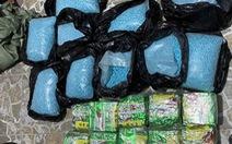 7 nghi phạm đưa ma túy từ Campuchia về TP.HCM còn rất trẻ