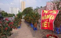 24 tết, người bán hoa tại Hà Nội xả hàng, giảm giá, chỉ mong huề vốn