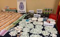 Tây Ban Nha bắt băng đảng phân phối cocaine lớn nhất ở thủ đô
