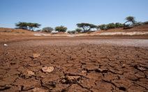 Miền nam châu Phi vật lộn với hạn hán kỷ lục