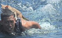 Hải quân Thái Lan đốn tim với việc bơi cứu 4 con mèo từ tàu sắp chìm