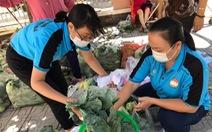 Người Sài Gòn bán bắp cải, su hào giúp nông dân Hải Dương