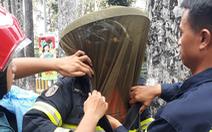Giúp trường học lấy tổ ong, một cảnh sát chữa cháy bị ong chích nhập viện