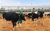 Vinamilk thăng hạng trong Top 50 doanh nghiệp sản xuất sữa hàng đầu thế giới