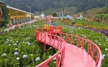 Lâm Đồng cấm kinh doanh lưu trú tại điểm du lịch canh nông