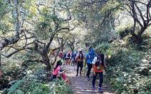 Cho con 9 tuổi đi theo chạy 42km trên núi Mộc Châu, một VĐV bị cộng đồng phản ứng