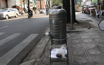 Sài Gòn bao dung - TP.HCM nghĩa tình: Có mà khen cả ngày chả hết