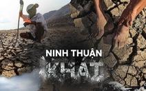 """Rủ nhau gửi cây thanh thất đến Ninh Thuận để """"trồng rừng - giữ nước"""""""