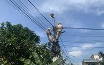 EVNNPC: Đảm bảo cấp điện mùa nắng nóng và chống dịch COVID-19