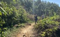 Chính phủ đồng ý cho Quảng Nam lập đề án thí điểm kinh doanh tín chỉ các-bon rừng