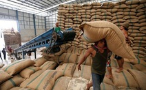 Thái Lan giảm phụ phí xuất khẩu gạo sang EU và Anh