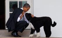 Gia đình Obama vĩnh biệt cún cưng bị ung thư