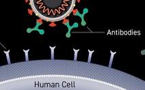 Tiêm vắc xin xong vẫn mắc COVID-19, nên hiểu thế nào cho đúng?